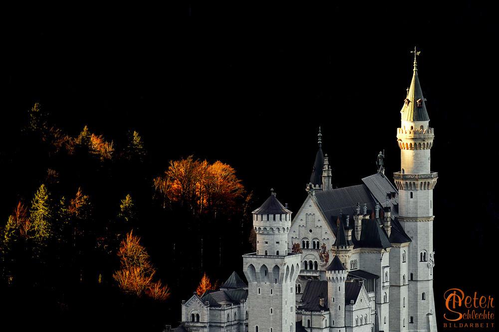 Detailansicht vom Schloss Neuschwanstein im Morgenlicht.