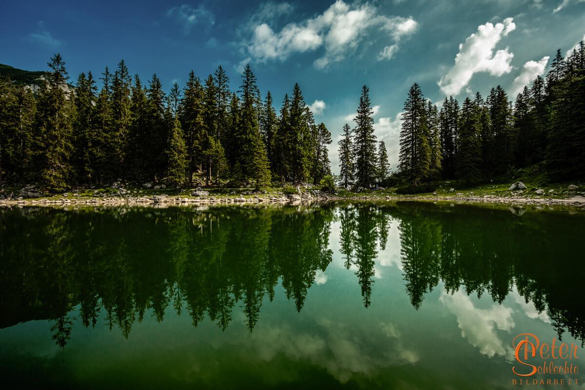 Baumspiegelung im glatten Soinsee, Nähe Bayerischzell.