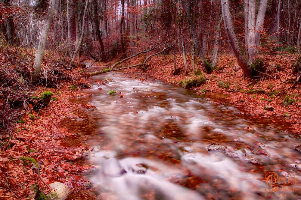 Bachlauf Nähe Bad Tölz im Herbst.