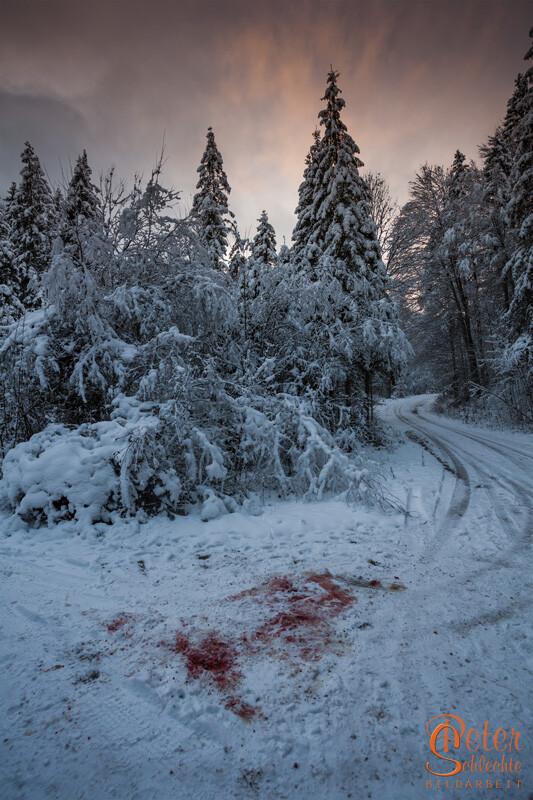 Blutflecke in einem idyllischen Winterwald? Wahrscheinlich nur ein legaler Mord ;)